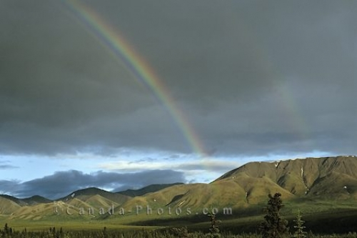 Photo: Denali Park Rainbow Alaska