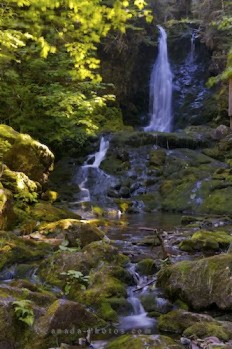 Photo: Dickson Falls Fundy National Park New Brunswick