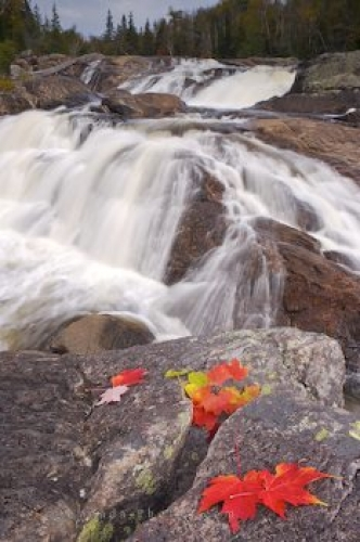 Photo: Fall Leaf Display Sand River Waterfall
