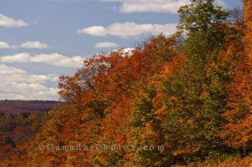 Photo: Fall Shades Algonquin Provincial Park Ontario