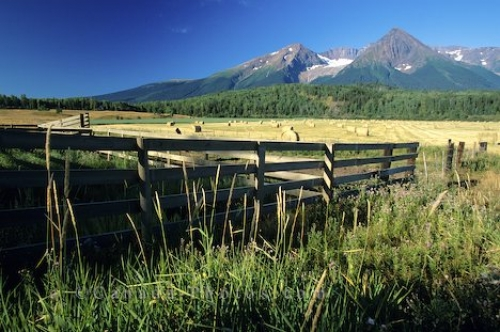 Photo: Fields British Columbia Canada