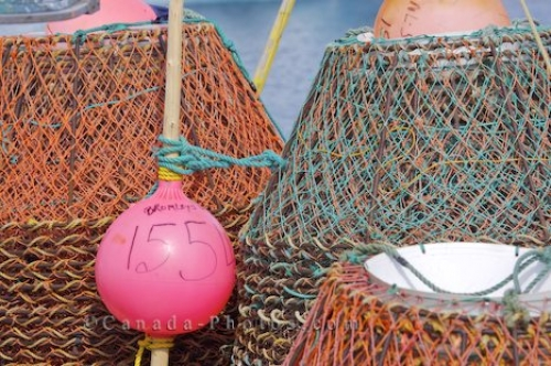 Photo: Fishing Boat Crab Pots Conche Harbour Newfoundland