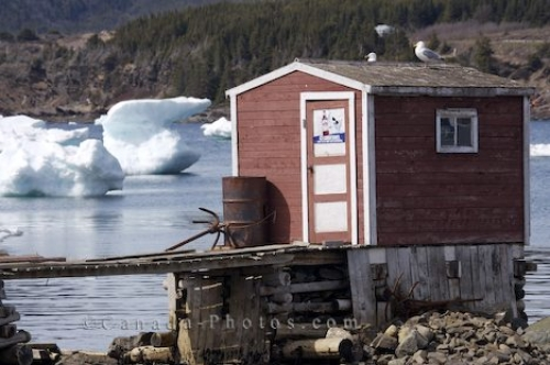 Photo: Fishing Stage Newfoundland