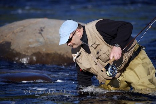 Photo: Fly Fisherman Southern Labrador Canada