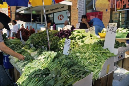 Photo: Market Fresh Vegetables