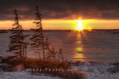 Photo: Frozen Landscape Sunset Churchill Manitoba