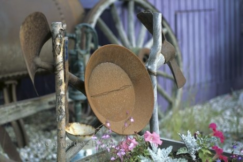 Photo: Garden Arrangement Klondike Gold Rush Yukon