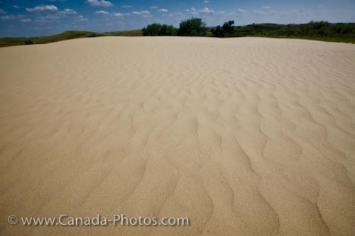 Photo: Great Sand Hills Patterns Sceptre Saskatchewan Canada