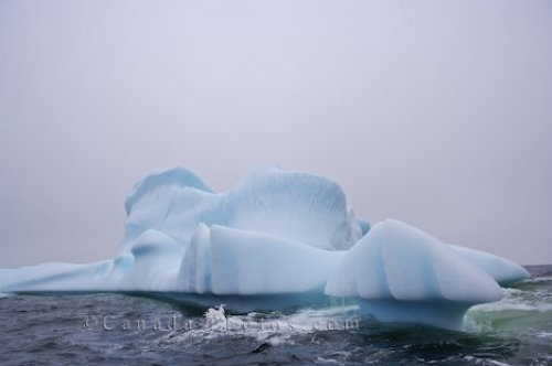Photo: Grounded Iceberg Great Caribou Island Southern Labrador