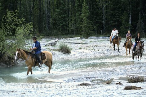 Photo: Horses Riding Blaeberry Valley