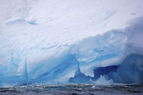 Photo: Iceberg Color Iceberg Alley Newfoundland