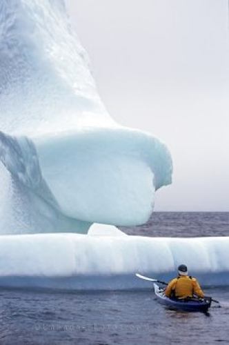 Photo: Iceberg Kayaking Newfoundland