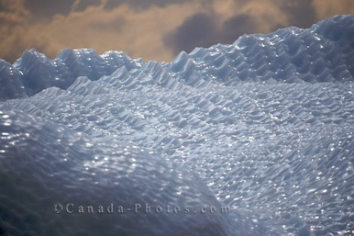 Photo: Icebergs Ice Details