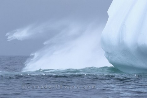 Photo: Floating Icebergs Photos