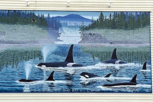 Photo: Killer Whales Mural Chemainus