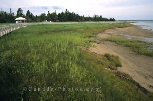 Photo: Kouchibouguac National Park Canada