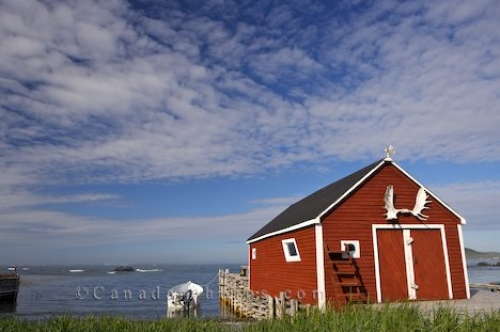 Photo: L Anse Aux Meadows Fishing Stage Newfoundland Labrador