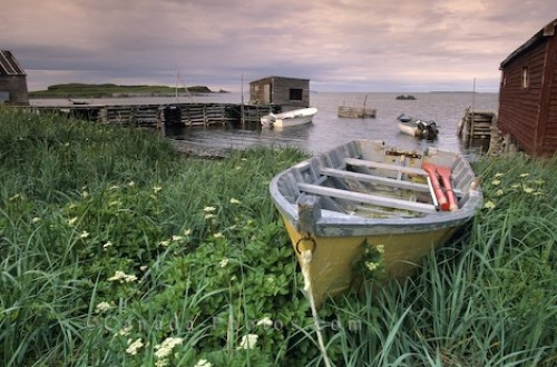 Photo: LAnse Aux Meadows Newfoundland