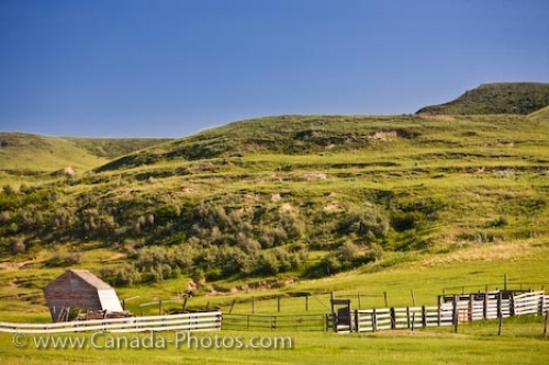 Photo: Old Leaning Shed Badlands Saskatchewan