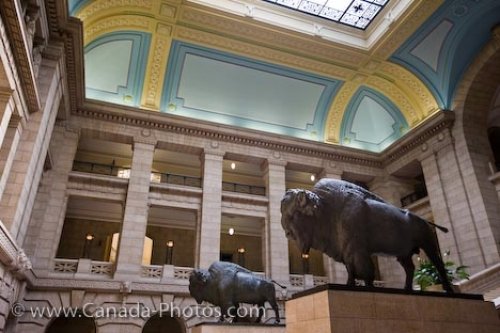 Photo: Legislative Building Bison Statues Winnipeg City Manitoba