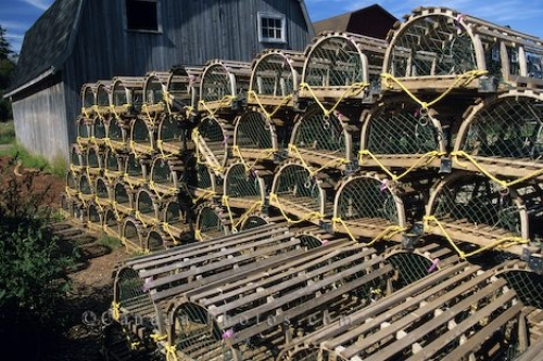 Photo: Lobster Traps Prince Edward Island