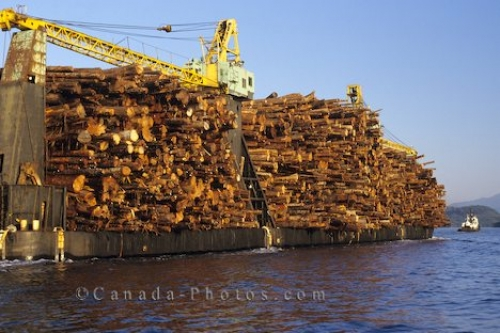 Photo: Log Barge British Columbia