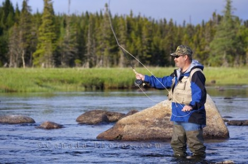 Photo: Man Fly Fishing Newfoundland River