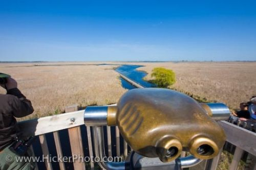 Photo: Marsh Boardwalk Binoculars Point Pelee National Park Leamington