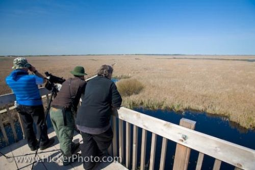 Photo: Marsh Boardwalk Bird Watching Point Pelee National Park Leamington