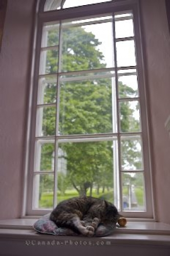 Photo: Memorial Church Cat Grand Pre National Historic Site