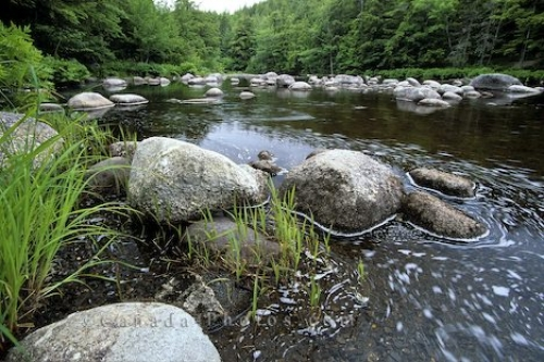 Photo: Mersey River Nova Scotia