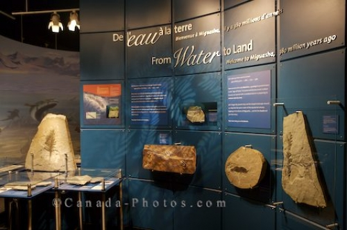 Photo: Miguasha National Park History Museum Quebec Canada