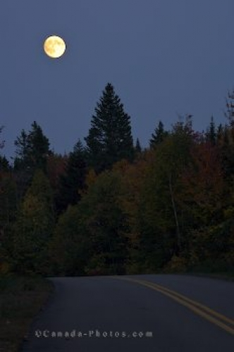 Photo: Moon Glow La Mauricie National Park Quebec