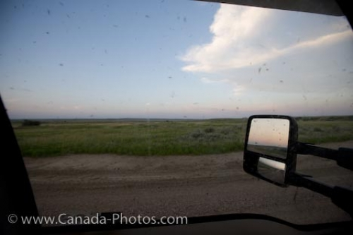 Photo: Mosquitoes Grasslands National Park Saskatchewan Canada