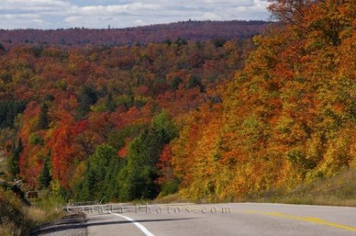 Photo: Ontario Highway Fall Colours Algonquin Provincial Park
