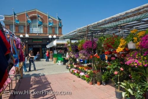 Photo: Outdoor Flower Stall Byward Market Ottawa Ontario