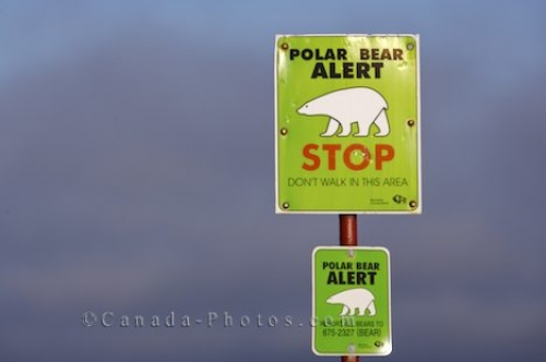 Photo: Polar Bear Warning Sign Hudson Bay