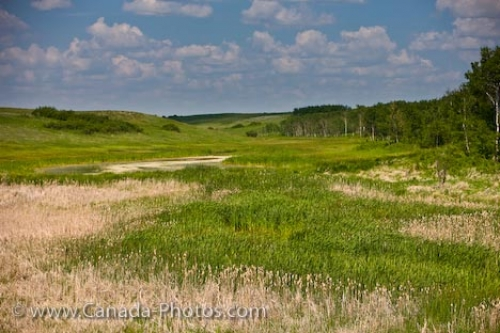 Photo: Qu Appelle Valley Landscape Rowans Ravine Provincial Park Saskatchewan