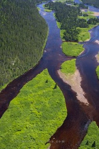 Photo: River Aerial Picture Southern Labrador