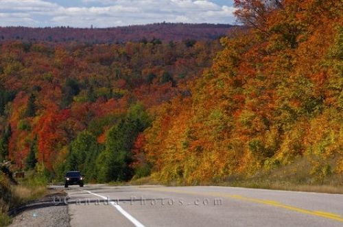 Photo: Roadside Attractions Algonquin Provincial Park