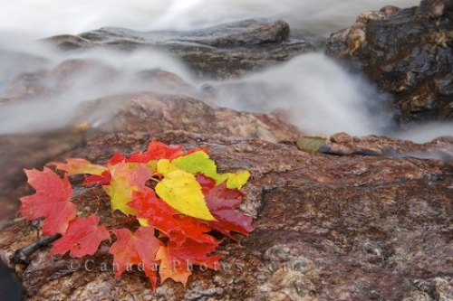 Photo: Sand River Waterfall Autumn Leaf Display Lake Superior Provincial Park