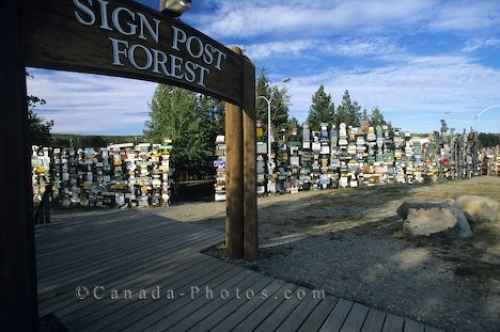 Photo: Sign Post Forest Yukon
