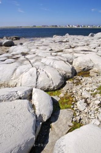 Photo: Thrombolites Picture Newfoundland Labrador