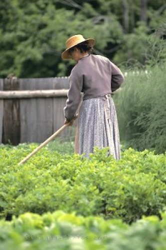 Photo: Upper Canada Village Garden