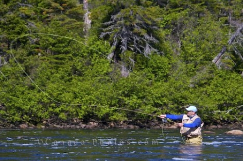 Photo: White Bear River Falls Fly Fishing Southern Labrador
