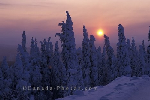 Photo: Winter Sunset Yukon