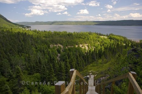 Photo: Wooden Steps Rattling Brook Falls Newfoundland