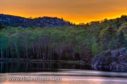 Photo: Yellow Sunset George Lake Killarney Provincial Park Ontario