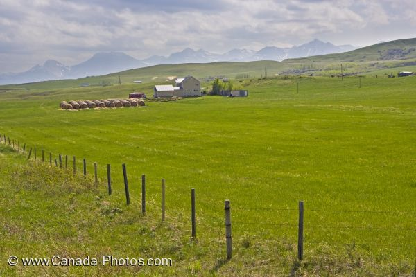 Photo: Alberta Farmland