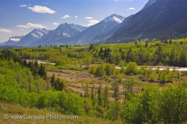 Photo: Blakiston Valley Waterton Lakes National Park Alberta